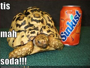 tis mah soda!!!