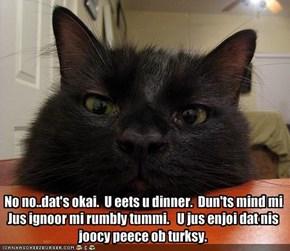 No no..dat's okai.  U eets u dinner.  Dun'ts mind mi.   Jus ignoor mi rumbly tummi.   U jus enjoi dat nis joocy peece ob turksy.