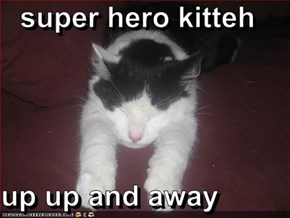 super hero kitteh  up up and away