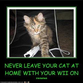 NEVER LEAVE YOUR CAT AT HOME WITH YOUR WII ON