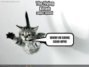 The Flying Kitteh