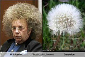 Phil Spector Totally Looks Like Dandelion