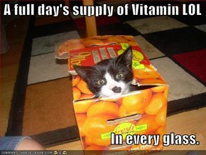 A full day's supply of Vitamin LOL  In every glass.
