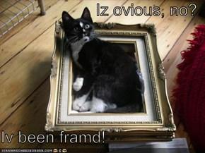 Iz ovious, no?  Iv been framd!