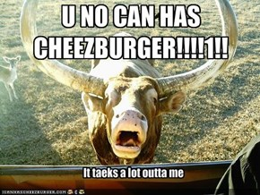 U NO CAN HAS CHEEZBURGER!!!!1!!