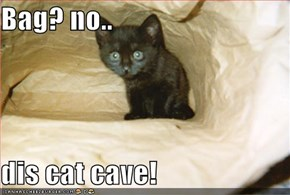 Bag? no..  dis cat cave!