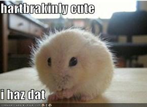 hartbrakinly cute  i haz dat