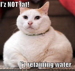 I'z NOT fat!  I'z retaining water