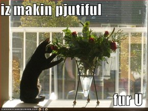 iz makin pjutiful  fur U