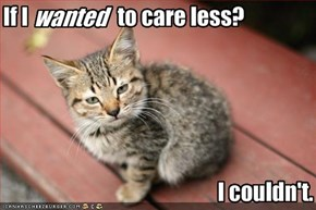 If I                     to care less?