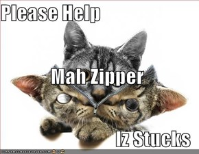 Please Help  Mah Zipper Iz Stucks