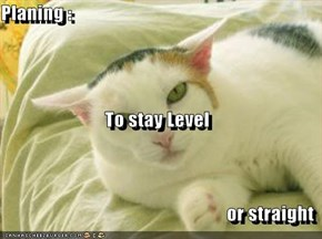 Planing : To stay Level  or straight