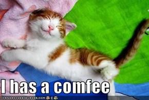 I has a comfee
