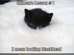 Skincare Lesson # 1               A mean looking blackhead