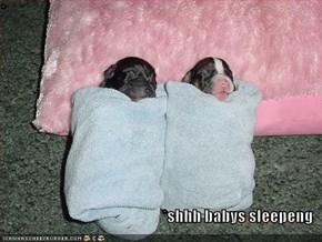 *  *shhh babys sleepeng