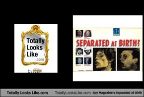 Totally Looks Like.com Totally Looks Like Spy Magazine's Separated at Birth