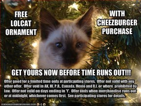 FREE LOLCAT ORNAMENT