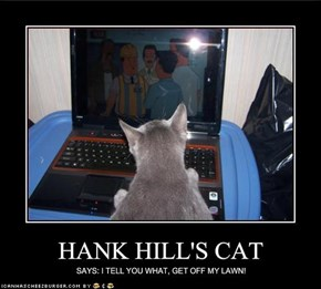 HANK HILL'S CAT