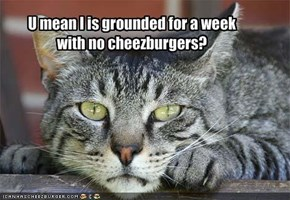 U mean I is grounded for a week with no cheezburgers?
