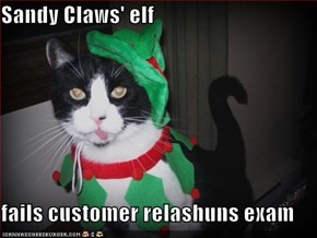 Sandy Claws' elf  fails customer relashuns exam