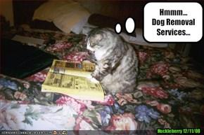 Hmmm... Dog Removal Services...