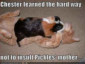 Chester learned the hard way  not to insult Pickles' mother...