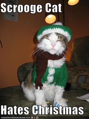 Scrooge Cat  Hates Christmas