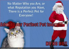 Adopt Your Perfect Pet today!!! HO HO HO!!