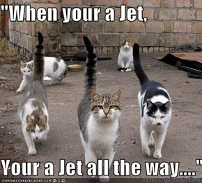 """When your a Jet,  Your a Jet all the way...."""
