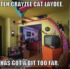 TEH CRAYZEE CAT LAYDEE.  HAS GOT A BIT TOO FAR.