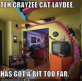 TEH CRAYZEE CAT LAYDEE.  HAS GOT A BIT TOO FAR.