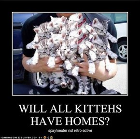 WILL ALL KITTEHS HAVE HOMES?