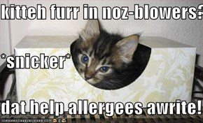 kitteh furr in noz-blowers? *snicker* dat help allergees awrite!