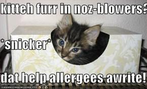 kitteh furr in noz-blowers? *snicker* dat help allergees awrite!