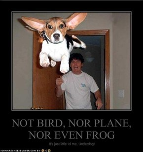 NOT BIRD, NOR PLANE, NOR EVEN FROG