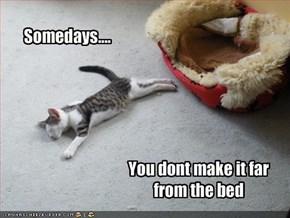 Somedays....
