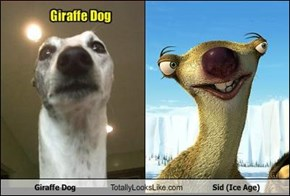 Giraffe Dog Totally Looks Like Sid (Ice Age)