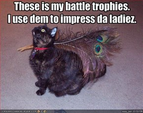 These is my battle trophies. 