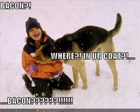 BACON?! WHERE?! IN UR COAT?!.... ....BACON??????!!!!!!