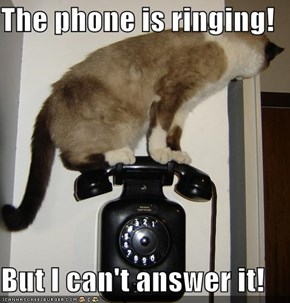 The phone is ringing!  But I can't answer it!