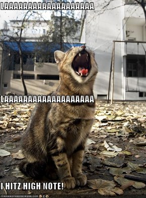 LAAAAAAAAAAAAAAAAAAA LAAAAAAAAAAAAAAAAAAA I HITZ HIGH NOTE!