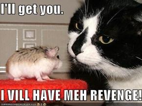I'll get you.  I VILL HAVE MEH REVENGE!