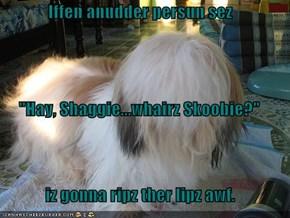 """Iffen anudder persun sez  """"Hay, Shaggie...whairz Skoobie?"""" iz gonna ripz ther lipz awf."""