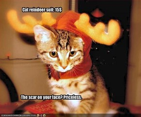 Cat reindeer suit: 15$