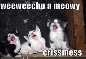 weeweechu a meowy  crissmess