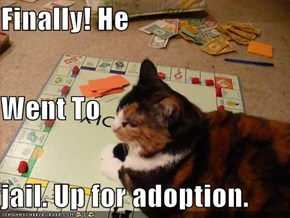 Finally! He Went To  jail. Up for adoption.