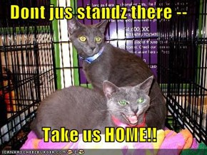 Dont jus standz there --  Take us HOME!!