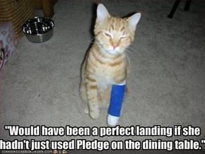 """Would have been a perfect landing if she 