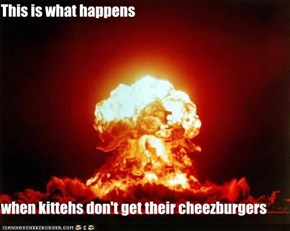 This is what happens  when kittehs don't get their cheezburgers