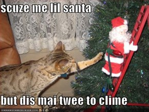 scuze me lil santa  but dis mai twee to clime